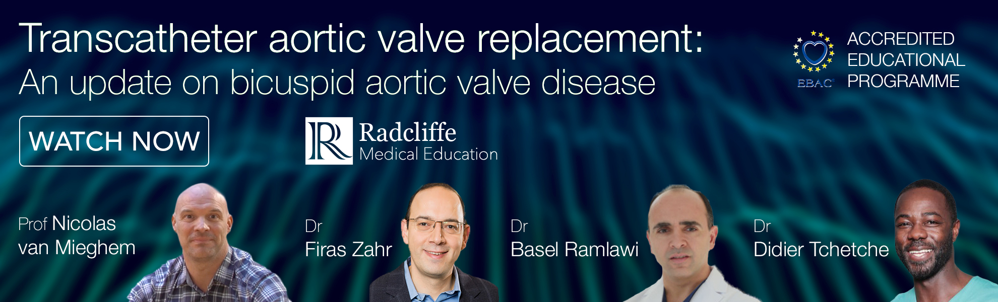 Transcatheter Aortic Valve Replacement: An Update in Bicuspid Aortic Valve Disease
